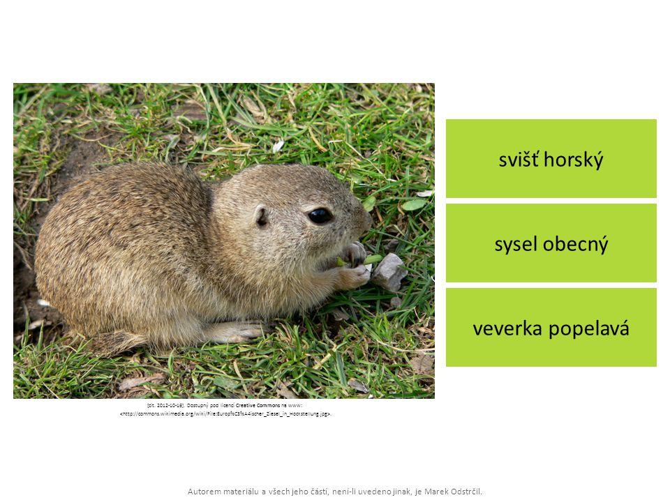 [cit. 2012-10-16]. Dostupný pod licencí Creative Commons na www: